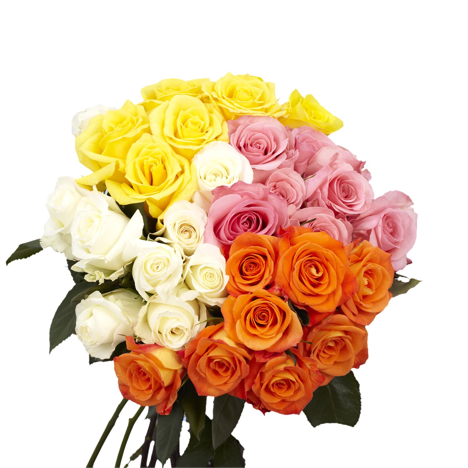 Globalrose Assorted Roses 2 Lovely Color 50 Fresh Flowers For Delivery