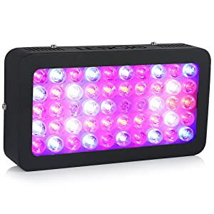 Ledgle LED Grow Light