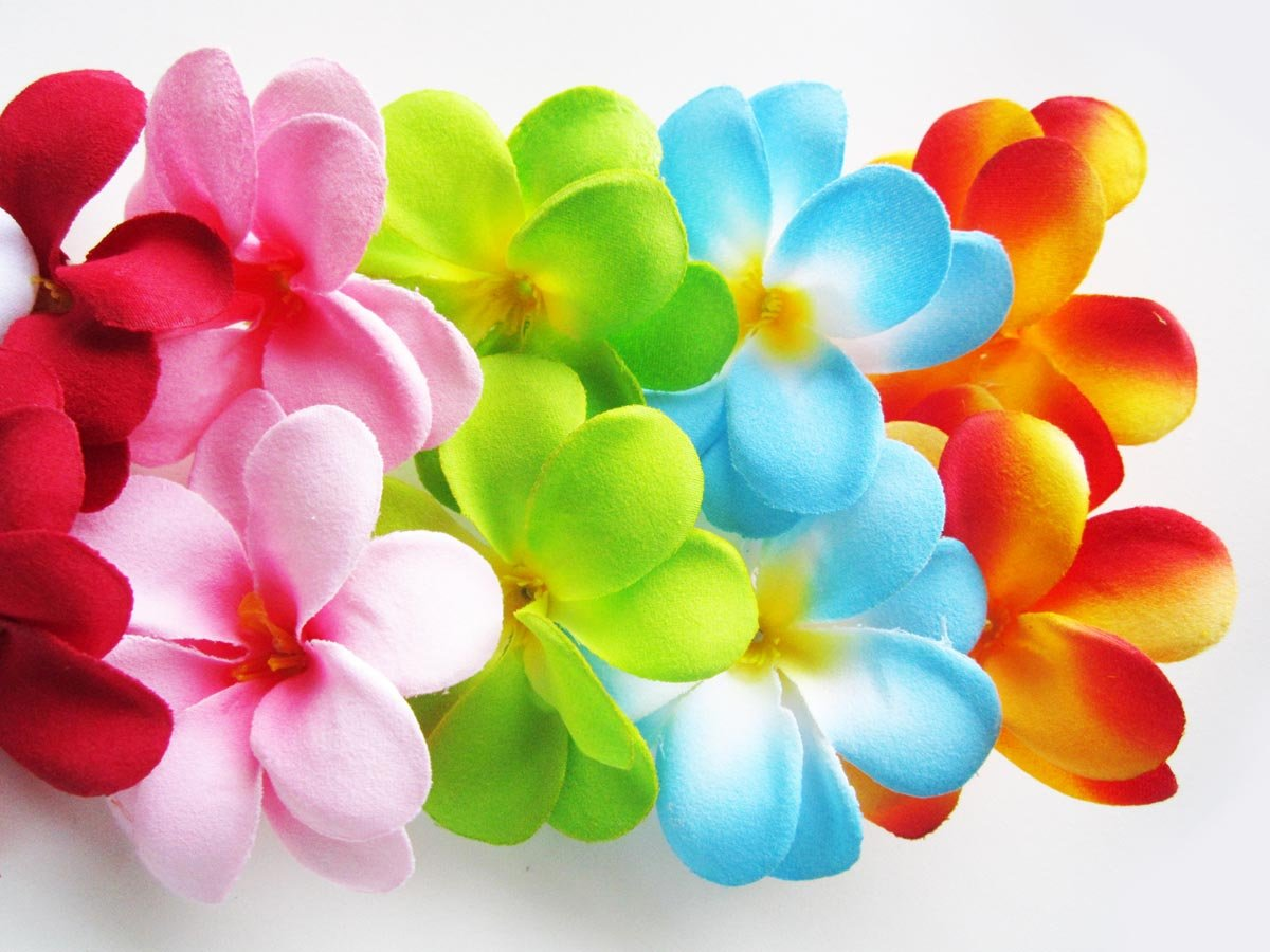 100-Assorted-Hawaiian-Plumeria-Frangipani-Silk-Flower-Heads-3-Artificial-Flowers-Head-Fabric-Floral-Supplies-Wholesale-Lot-for-Wedding-Flowers-Accessories-Make-Bridal-Hair-Clips-Headbands-Dress