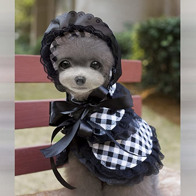2d6b5d11c8294 Amazon.com   BUYITNOW Small Dog Clothes Victorian Pet Lace Princess Costume