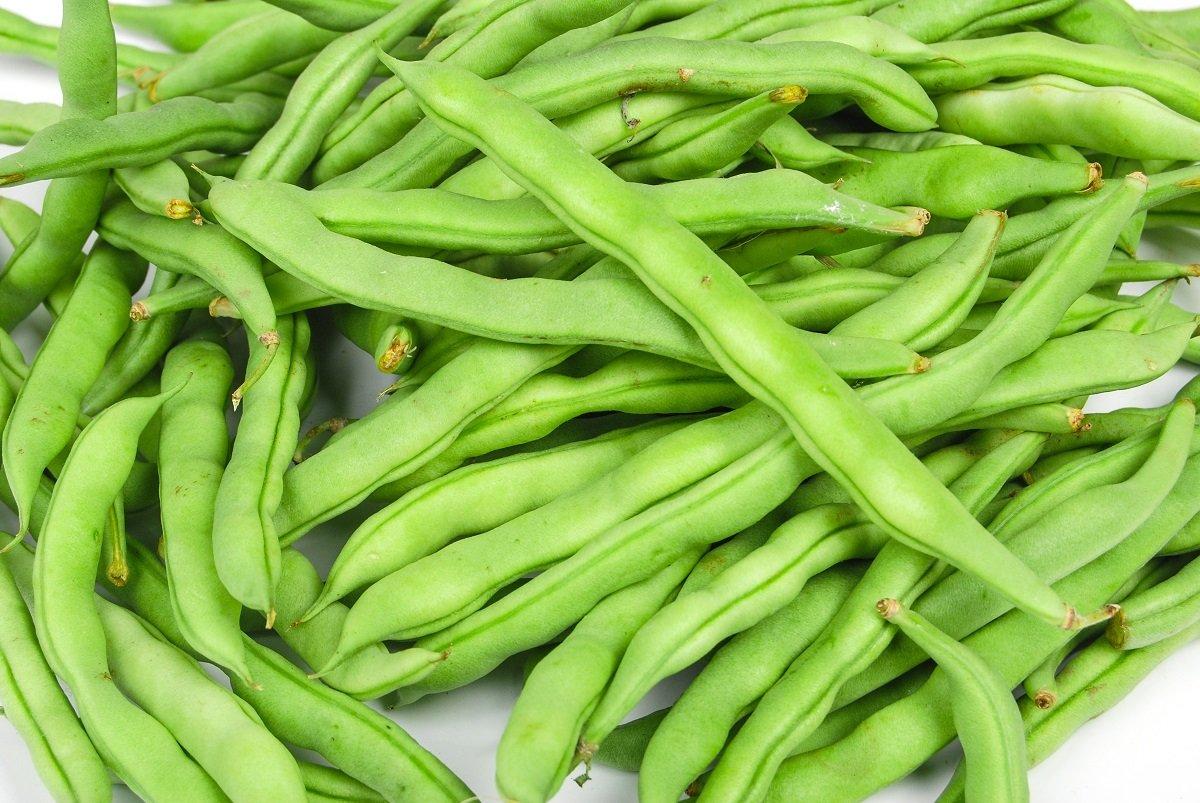 Frijol francés verde