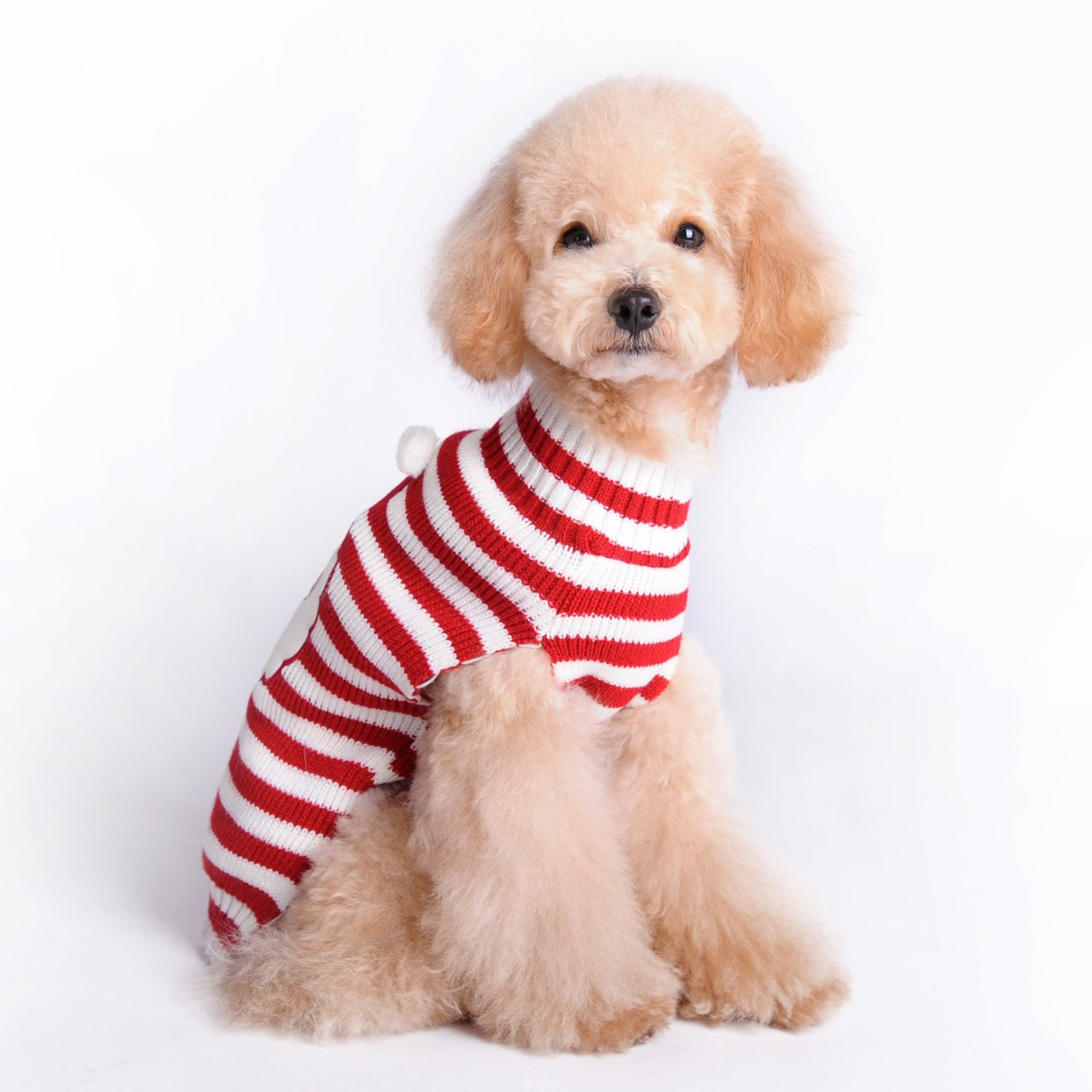 605826762aa6 HAPEE Dog Sweaters for Christmas Santa Pet Cat Clothes