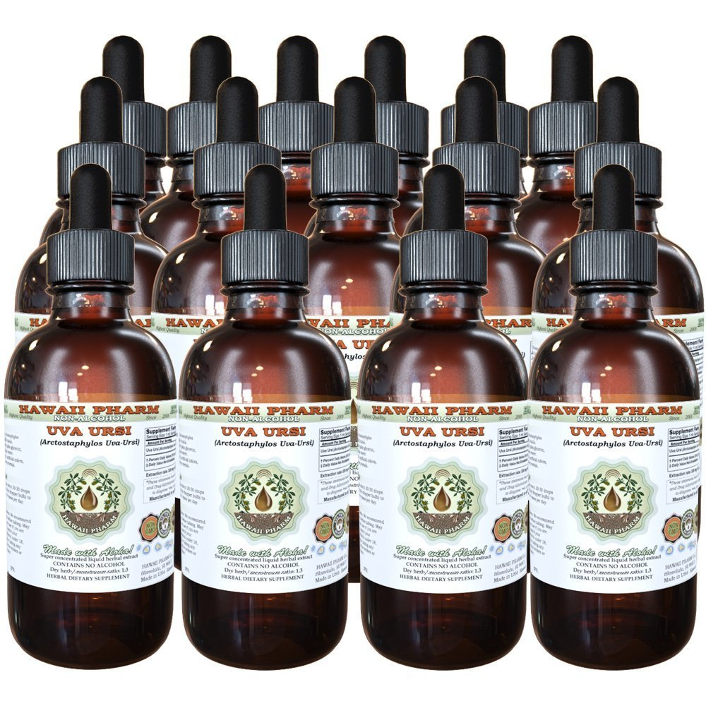 Uva Ursi Alcohol-FREE Liquid Extract, Organic Uva Ursi (Arctostaphylos Uva-Ursi) Dried Herb Glycerite Natural Herbal Supplement, Hawaii Pharm, USA 15x4 fl.oz
