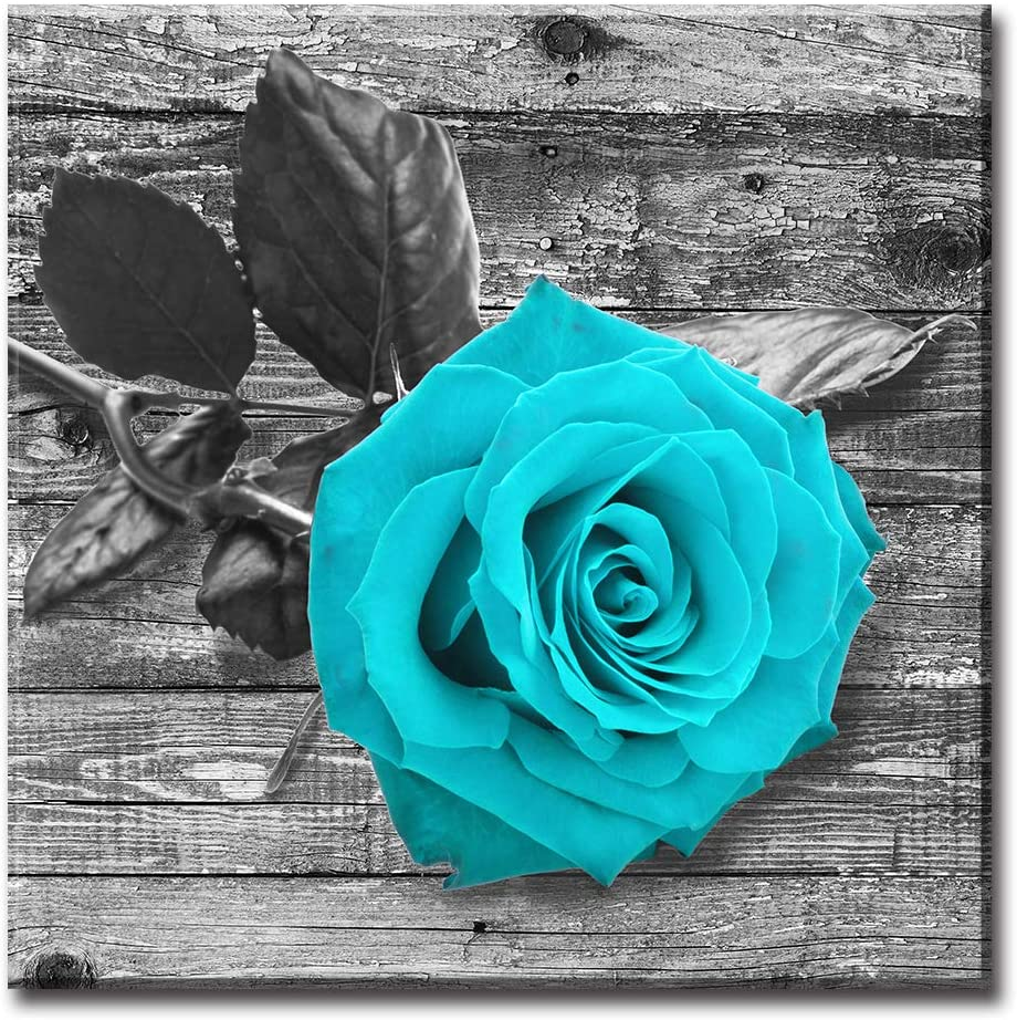 Amazon Com Jiazugo Teal Bathroom Wall Decor Blue Rose Painting Artwork Contemporary Watercolor Flowers Pictures Black And White Turquoise Floral Canvas Prints For Living Room 16x16 Inches Stretched And Framed Ready To Hang