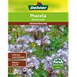 Dehner Saatgut, Phacelia / Bienenfreund, Gründüngung, 400 g, für ca. 100 qm