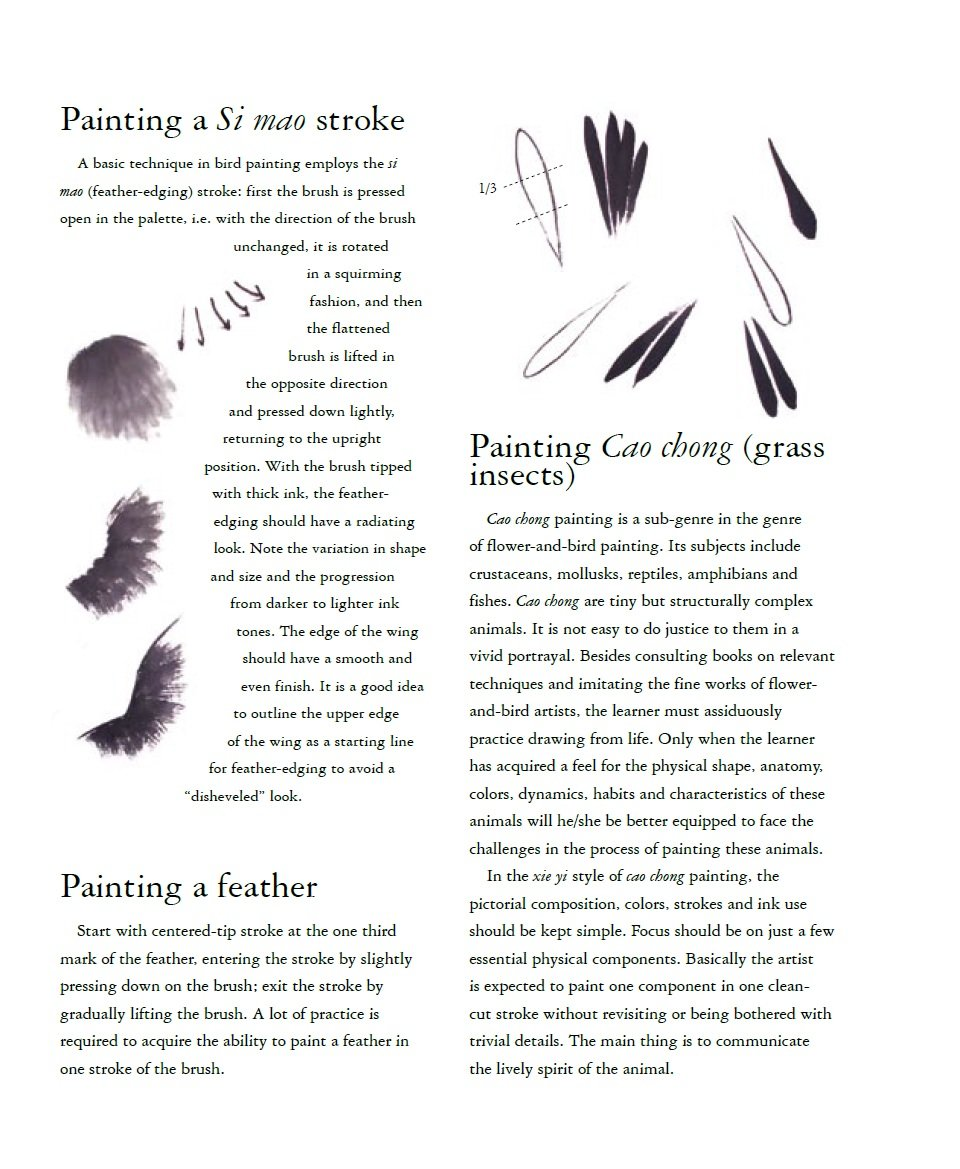 Birds and Insects: The Beginner's Guide to Chinese Painting: Amazon.co.uk:  Mei Ruo: Books