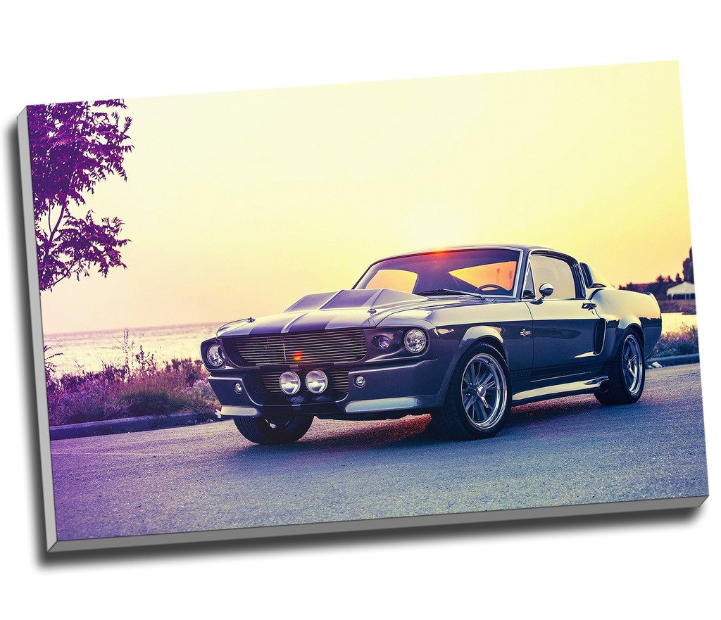 Amazon.com: Panther Print Classic Ford Mustang Gt500 Eleanor Canvas ...