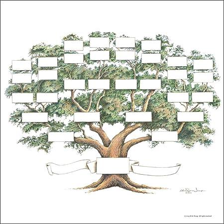Amazon.com: Family Tree Chart, 5-6 Generations, Scrapbook Size ...