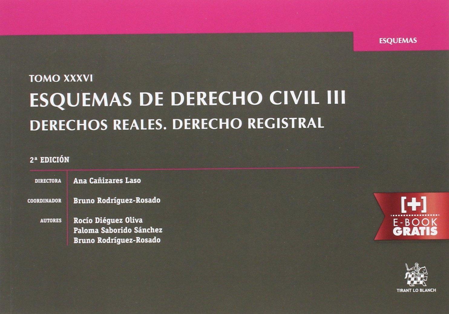 Tomo XXXVI Esquemas de Derecho Civil III Derechos Reales. Derecho Registral 2ª Edición: Amazon.es: Ana Cañizares Laso: Libros