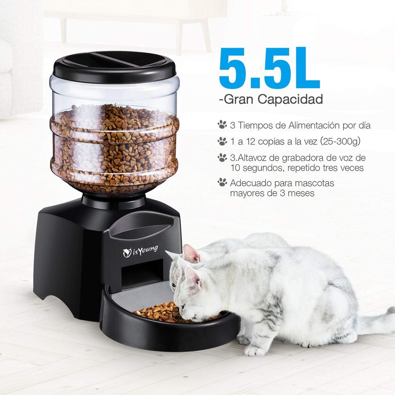 isYoung Comedero Automático 5.5 L de Alimentos para Mascotas Gatos ...