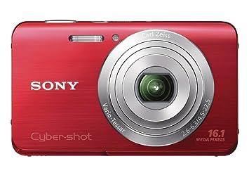 Sony DSC-W650 - Cámara Digital (Auto, Nublado, Luz de día,
