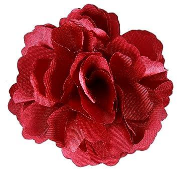 Amazon anleolife fabric red flower hair clipssilky floral hair anleolife fabric red flower hair clipssilky floral hair flowers bridal wedding cloth decor flower mightylinksfo Choice Image