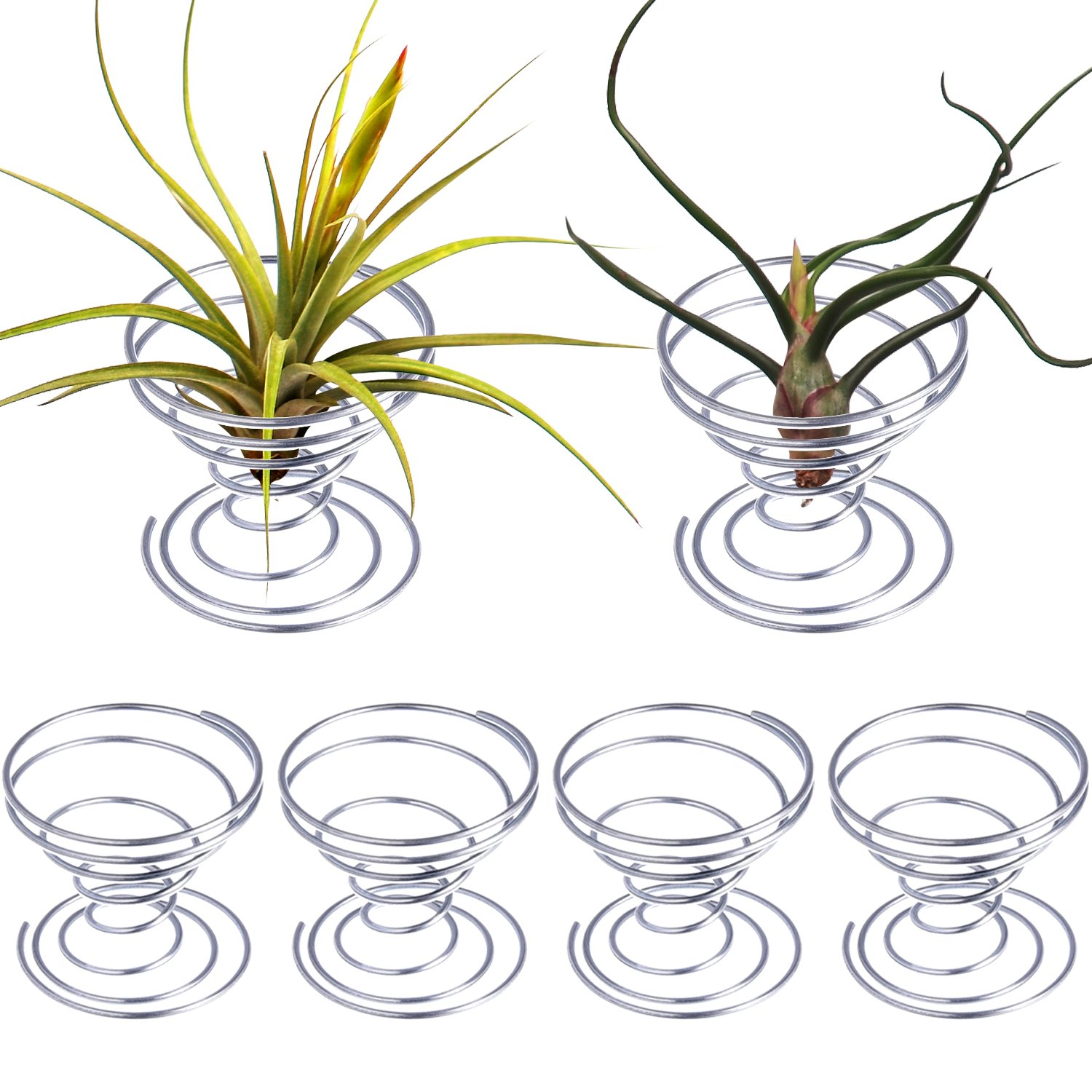 Hestya 6 Pieces Air Plant Stand Airplant Container Tillandsia Holder Stainless Steel Plant Display Racks, Silver