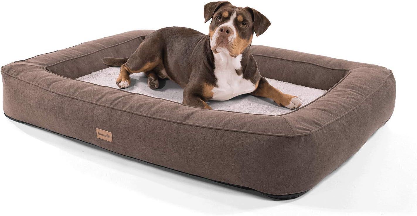 Brunolie Bruno - Cesta ortopédica para perros – Cama para perro lavable, higiénica y antideslizante con almohada y felpa transpirable en beige, talla XL