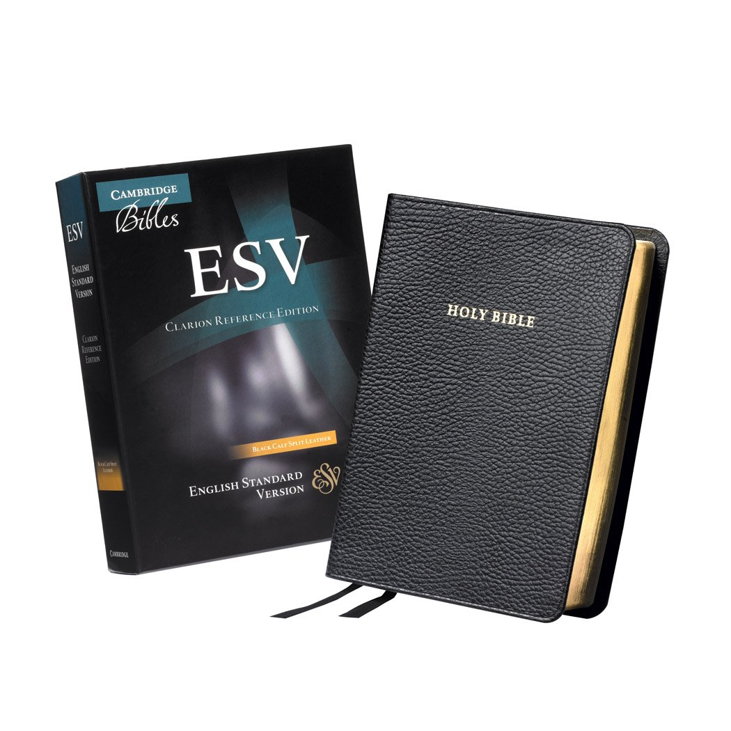 Read Online ESV Clarion Reference Edition Black Calf Split Leather ES483:X PDF