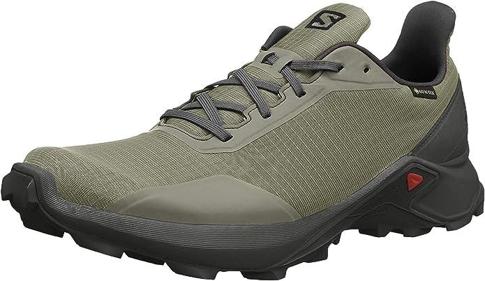 Salomon Alphacross GTX, Zapatillas de Trail Running para Hombre ...