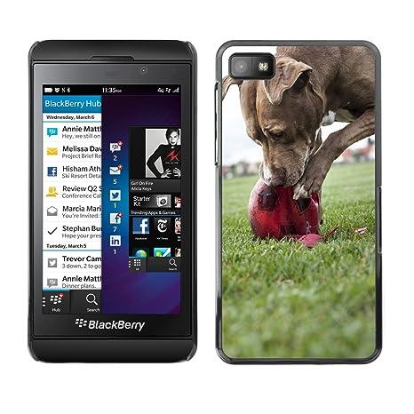 Cas Coq Case Cover // M00147027 Perro Mascotas Bola Jugar Destroy // BlackBerry Z10