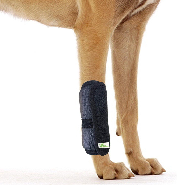 RockPet Órtesis Curadora Articulación Pata Delantera de Perro Envoltura Canina de Corvejón (S/M)