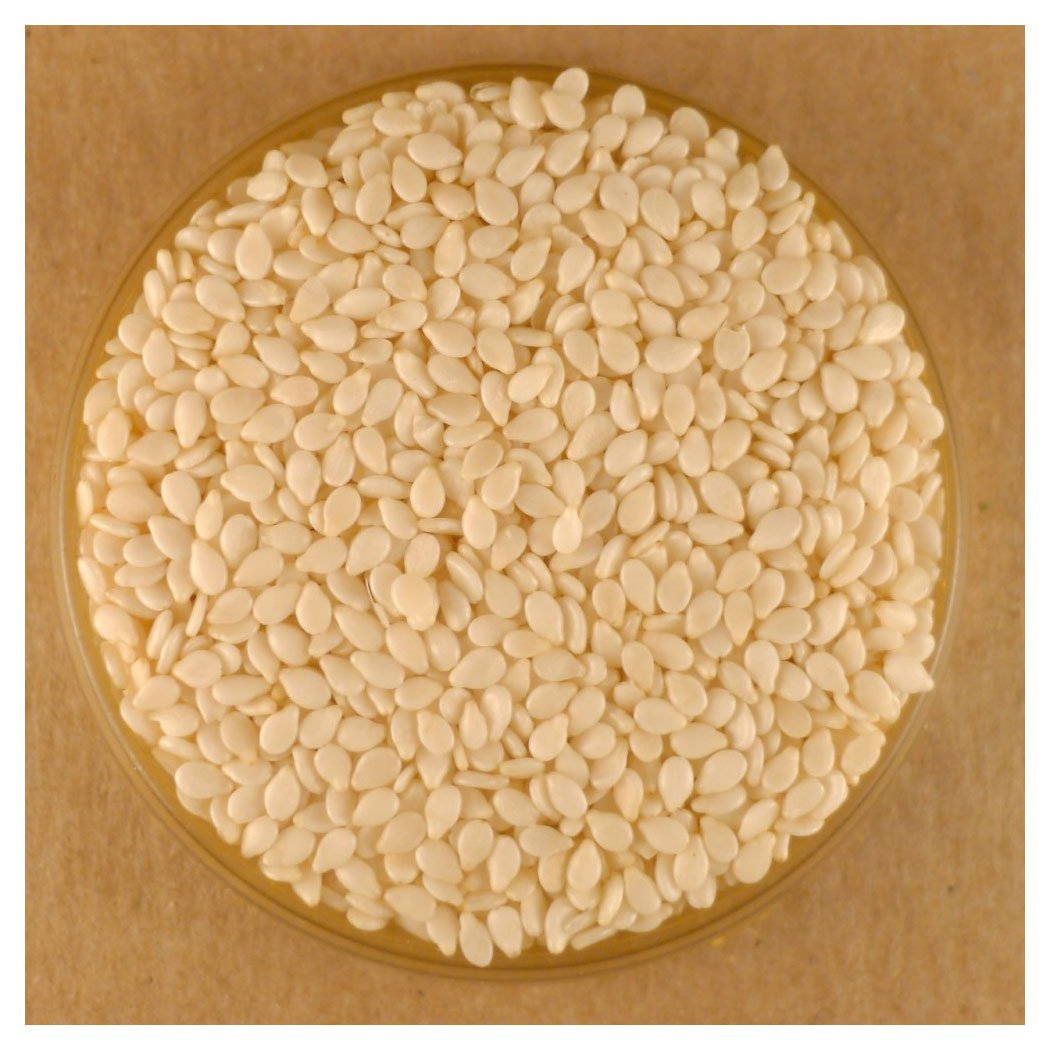 Sesame Seeds, White (8oz)