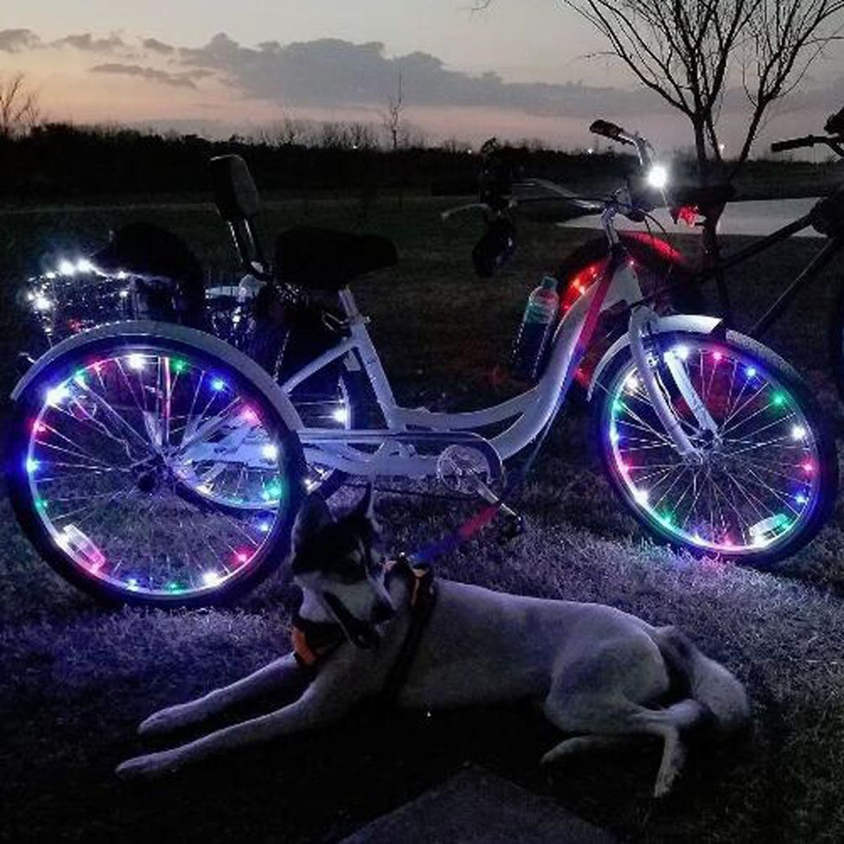 DIMY Bike Wheel Lights, LED Bike Wheel Light for Boys Toys for 5-16 Year Old Boys 5-14 Year Old Boy Gifts for Teen Girl Outdoor Toys Multicolor TTB07 by DIMY (Image #4)