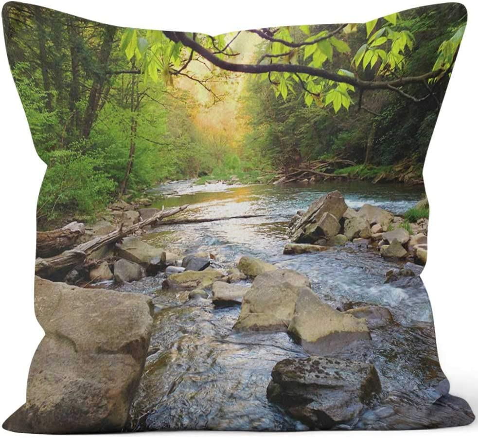 """Nine City Mountain Trout Stream in Pennsylvania Throw Pillow Cover,HD Printing for Sofa Couch Car Bedroom Living Room Decor,24"""" W by 24"""" L"""