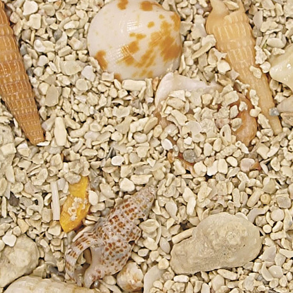 Safe & Non-Toxic (Various Sizes) 15 Pound Bag of Gravel, Rocks & Pebbles Decor for Freshwater & Saltwater Aquarium w/ Natural Tiny Beach Shells Style [Tan, Light Brown, White & Yellow] by mySimple Products