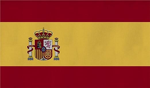 Bandera Formato Grande 250 x 150 cm Resistente a la Intemperie Bandera en 16 Distintas Versiones con Ojales - 150 x 250 cm, España: Amazon.es: Deportes y aire libre
