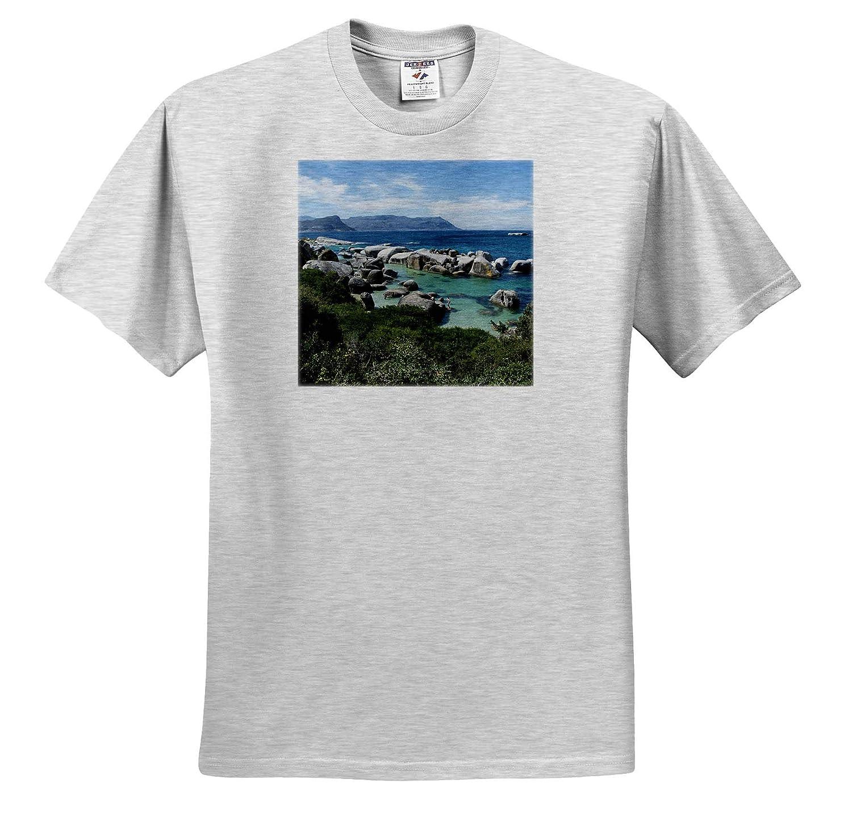 Cape Town Boulders Beach ts/_312509 South Africa Simons Town South Africa - Adult T-Shirt XL 3dRose Danita Delimont