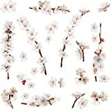 Roommates RMK2085SCS Dogwood Branch Peel and Stick Wall Decals-[26 count]