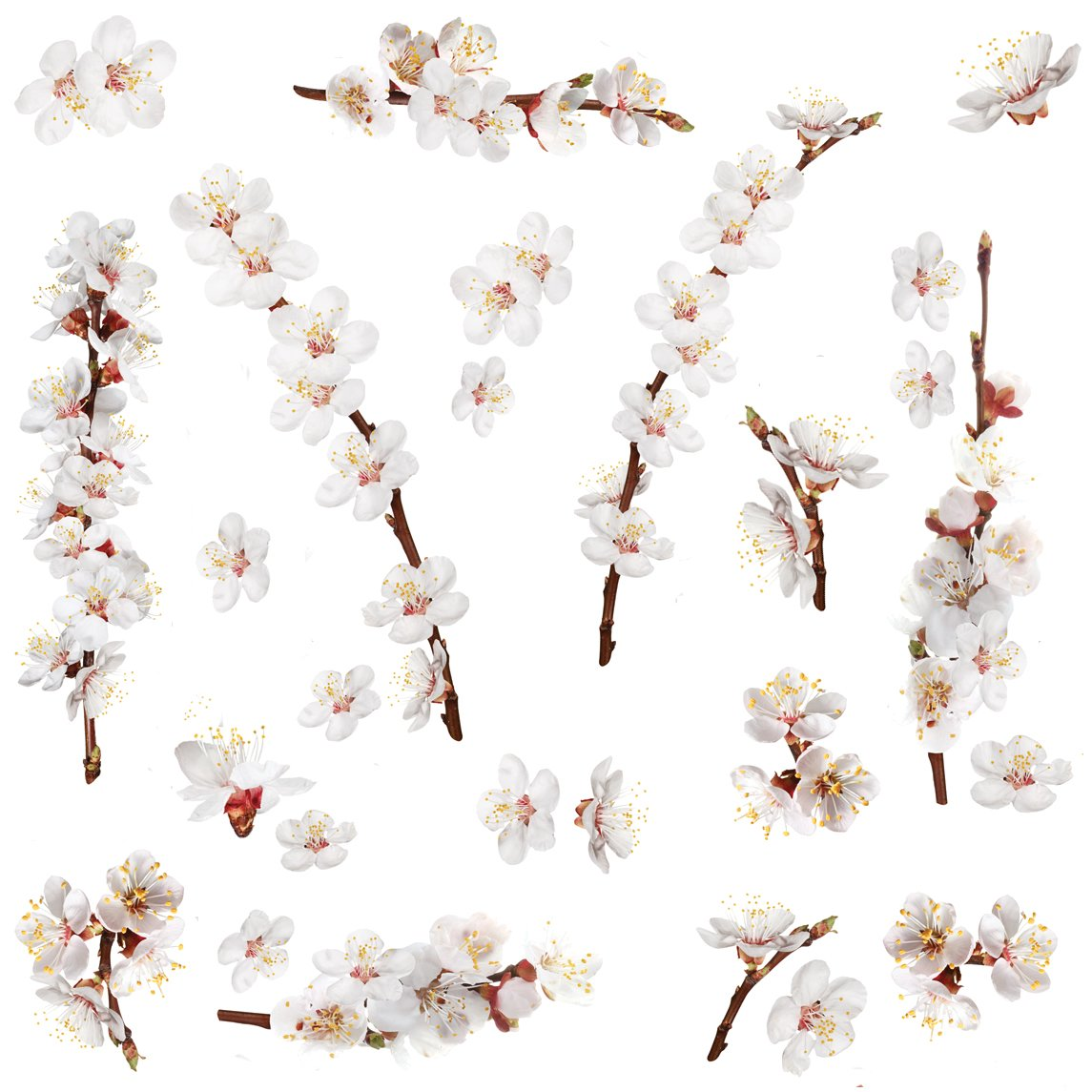 Roommates rmk2085scs dogwood branch peel and stick wall decals 26 roommates rmk2085scs dogwood branch peel and stick wall decals 26 count decorative wall appliques amazon amipublicfo Gallery