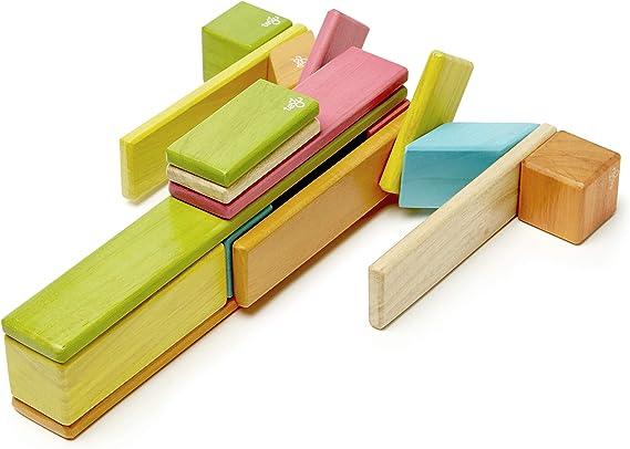 Tegu Juego de Bloques de Construcción de madera magnéticos de 24 piezas - Tintes , color/modelo surtido: Amazon.es: Juguetes y juegos