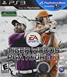 Tiger Woods PGA Tour 13 (輸入版)