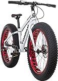 Framed Mini-Sota Fat Bike Kid's