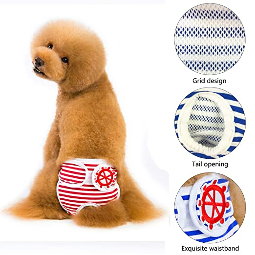 ... pañales para perros, cómodas y elegantes, pañales de calidad para perros por mascotas, tanto para perros macho y hembra.(XL): Amazon.es: Productos para ...