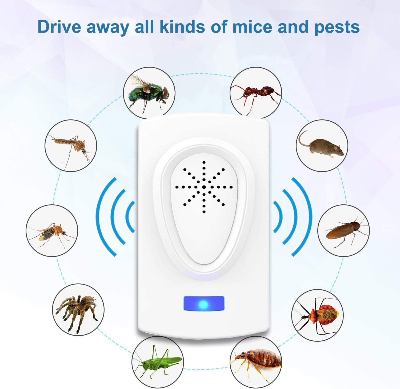 /Électronique Anti Rats Souris Moustiques Coquerelle Mouches Cafards Fourmis Araign/ées 4 Pcs R/épulsif /à Ultrasons R/épulsif R/épulsif Ultrason Anti Rongeurs Insectes