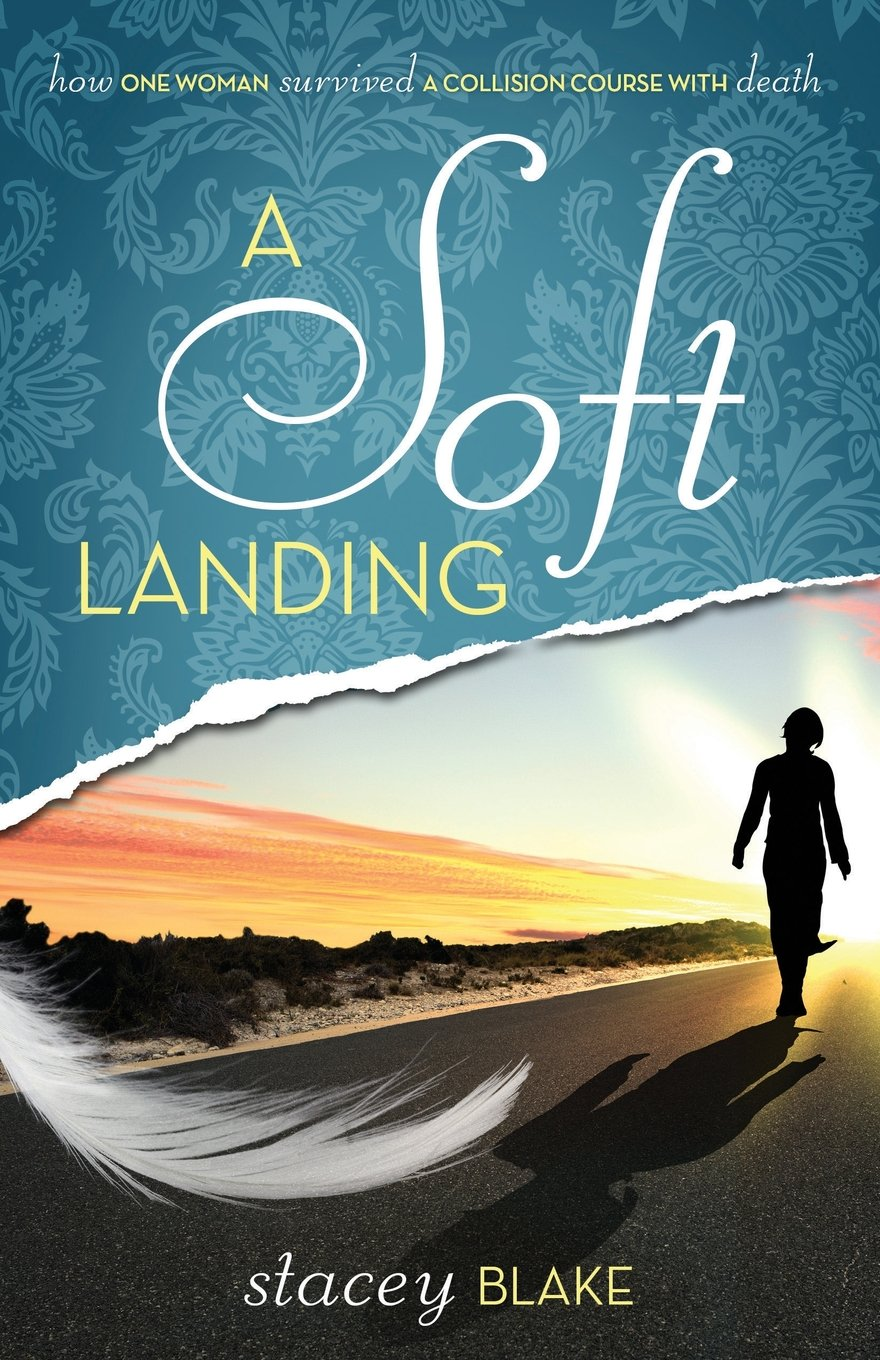 A Soft Landing: How One Woman Survived a Collision Course with Death pdf epub