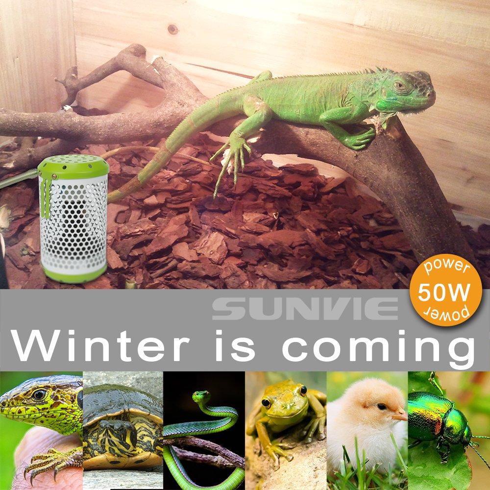 SUNVIE - Lámpara de Calor para Reptiles con Bombillas de 50 W de ...