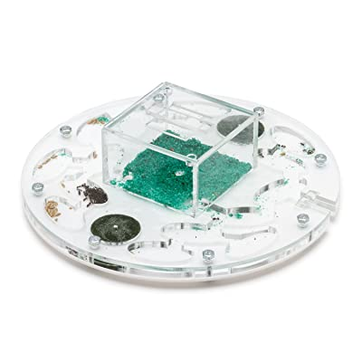 Ant Farm Educational Kit Circle Big (Formicarium, Ants): Toys & Games