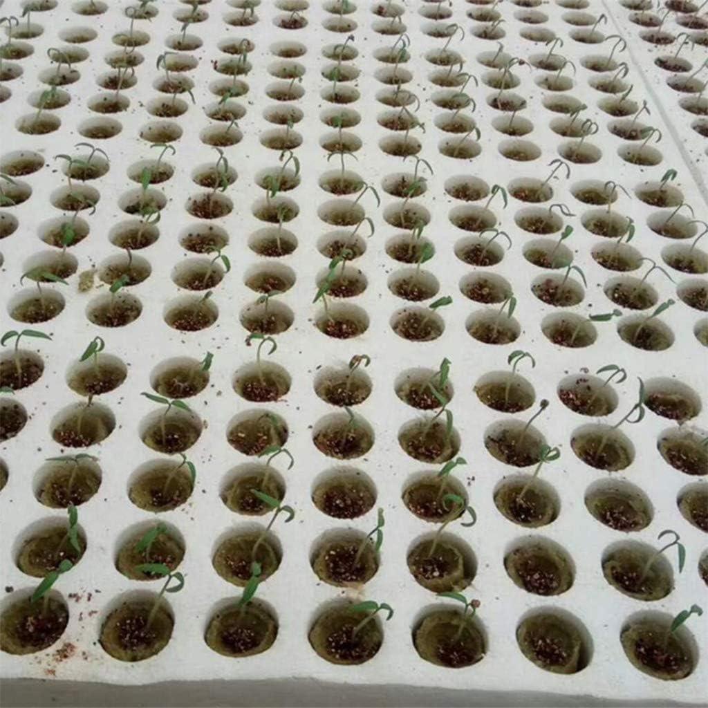 S-TROUBLE 20 Piezas Cilindro Planta de Lana de Roca Medios de Cultivo hidrop/ónico Base de compresi/ón de Cultivo sin Suelo para huerto de Invernadero de jard/ín