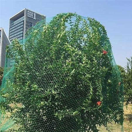 Dbtxwd Malla De Protección De Jardín para La Protección De Plantas Malla De Malla para El Control De Plagas Frutas De Planta Hortalizas De Flores Guisante Anti-Bird Red De Fruta,Black6x6m: Amazon.es: Hogar