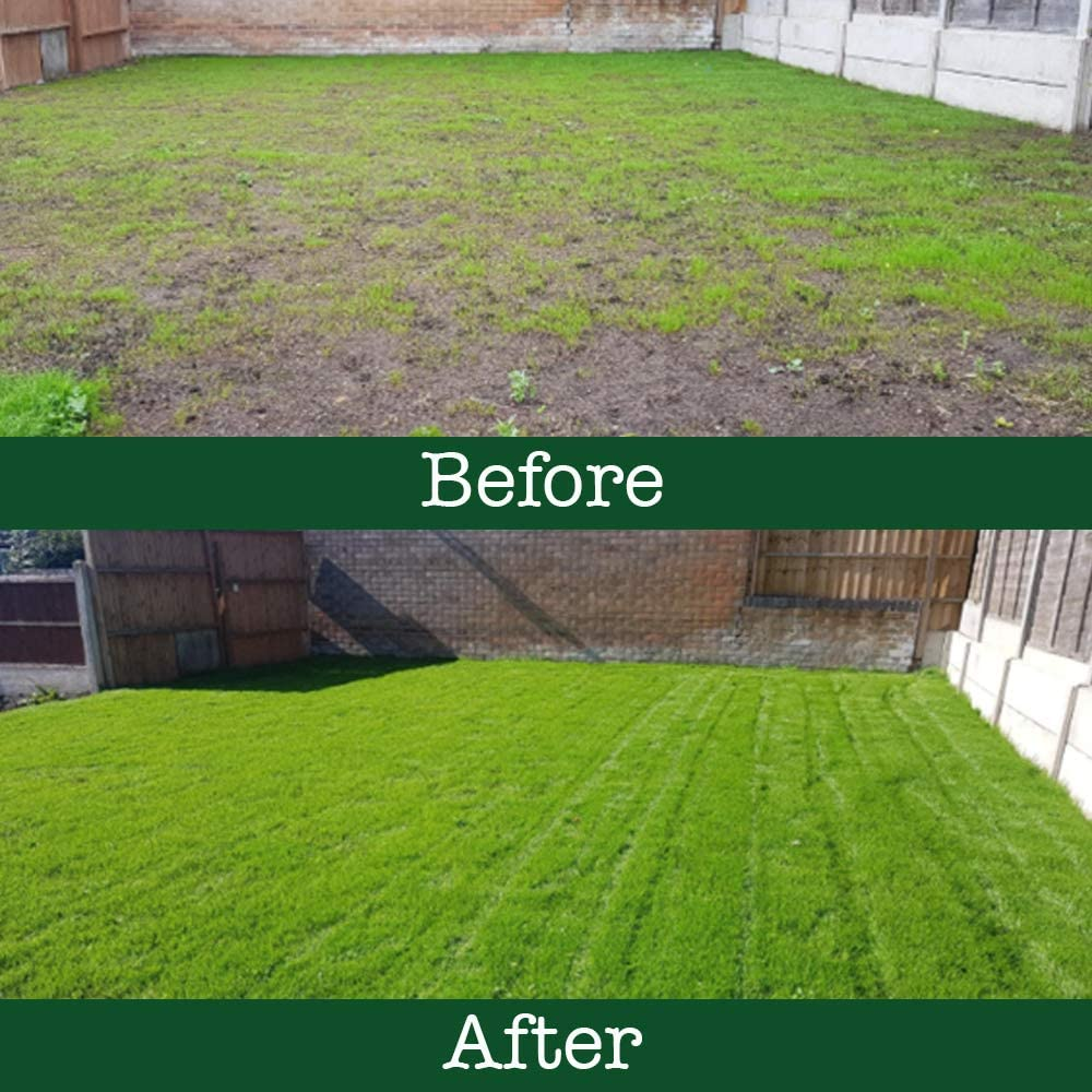 High Quality Lawn Hard Wearing and Attractive Grass Lawn Luxury Lawn The Grass People Family: Kids and Pets 2kg Grass Seed Lawn Seed Perfect for Families