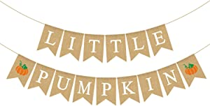 Rainlemon Jute Burlap Little Pumpkin Banner Fall Baby Shower Gender Reveal Birthday Party Garland Decoration