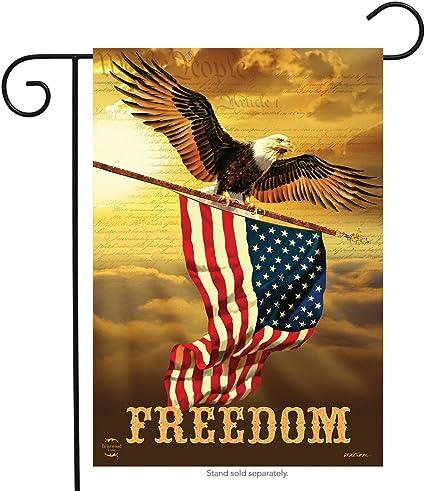 Amazon Com Briarwood Lane Freedom Patriotic Garden Flag Bald Eagle Usa 12 5 X 18 Garden Outdoor
