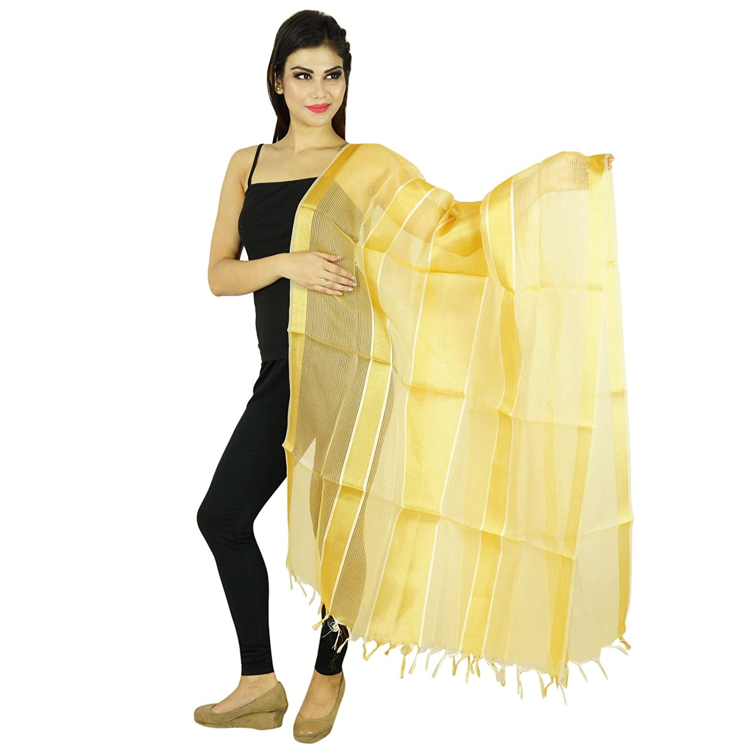 Indian Dupatta Neck Wrap Throw Long Stole Tissue Organza Scarf