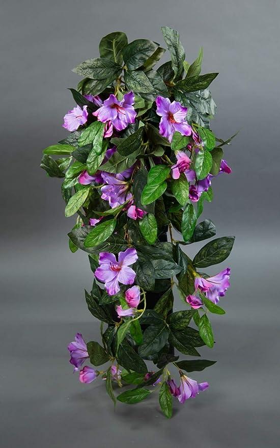 Seidenblumen Ro/ß Dieffenbachia 75cm gr/ün-gelb ZJ Kunstpflanzen k/ünstliche Pflanzen