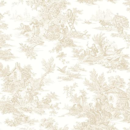 York Wallcoverings Black And White Champagne Toile Wallpaper