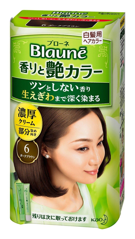 【花王】ブローネ 香りと艶カラー クリーム 6:ダークブラウン 80g ×20個セット B00URAK0CG