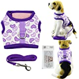 Bolbove Pet Cute Hearts Adjustable Vest Mesh Harness and Leash Set for Small Cats & Tiny Dogs