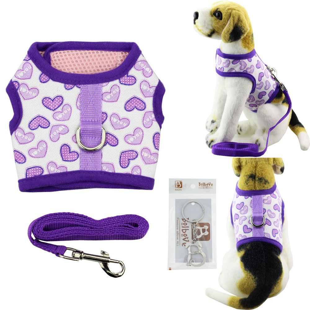 Bolbove Pet Cute Hearts Adjustable Vest Mesh Harness and Leash Set for Small Cats & Tiny Dogs (Medium, Purple)