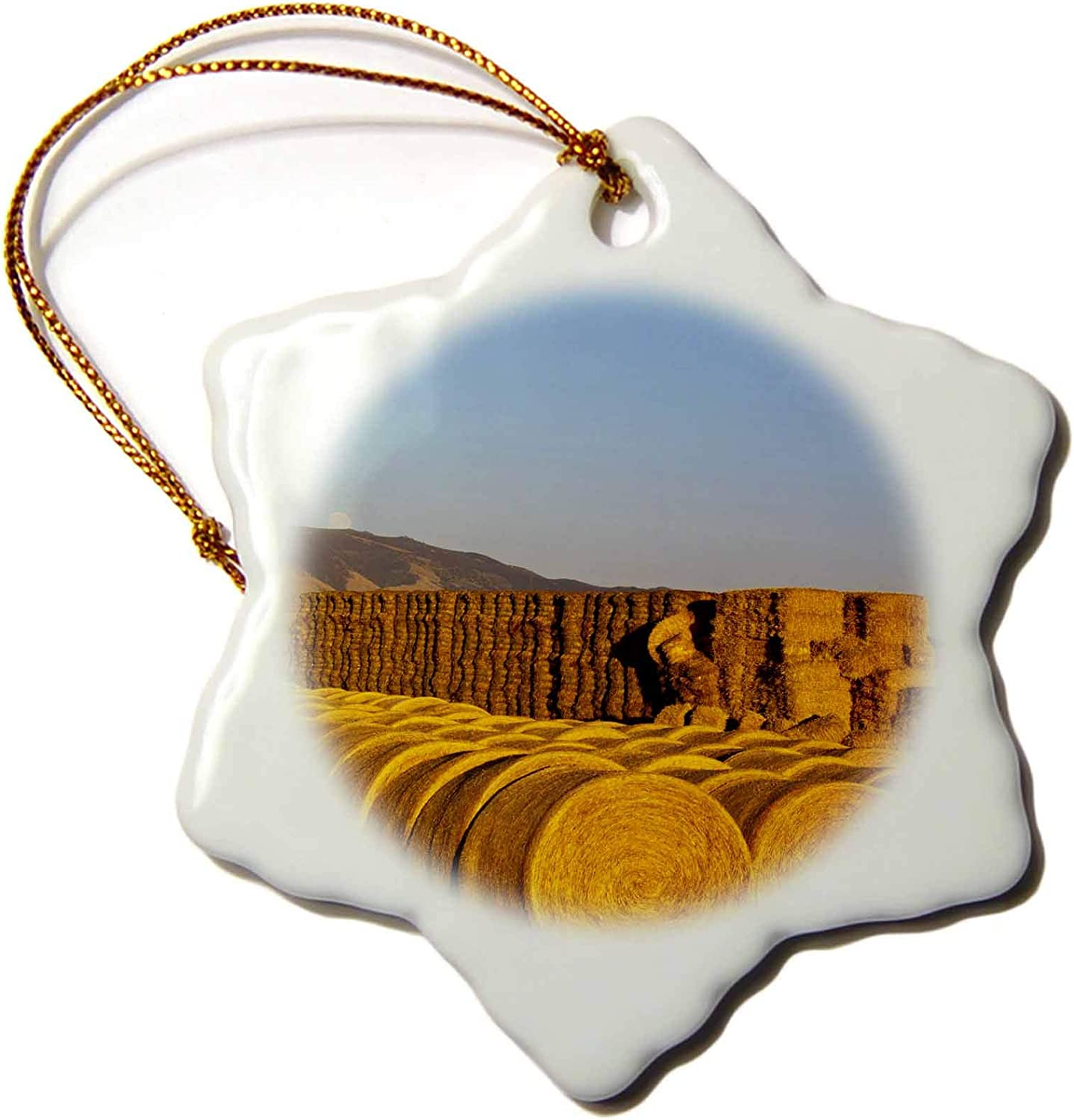3dRose Stacks of hay Bales, Farm, Castle Mountains, Montana - US27. - Ornaments (ORN_92026_1)